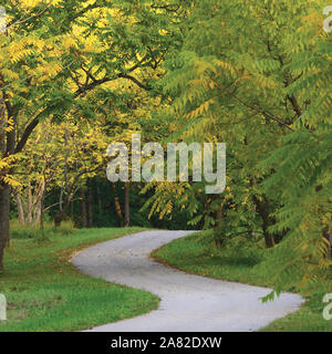 Walnut Trees In Autumnal Park, Large Detailed Vertical Landscaped Autumn Path Scene, Twisting Tarmac Walkway, Winding Asphalt Road Zigzag Perspective - Stock Photo