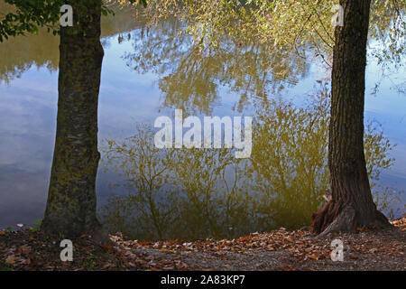Trees reflected in the water in natural wetland in late October in Colfiorito nature reserve in Umbria, Italy near the cities of Foligno and Perugia - Stock Photo