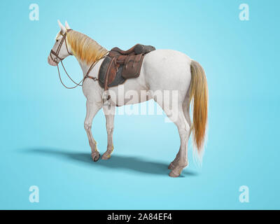 Horse white with bridle isolated 3d render on blue background with shadow - Stock Photo