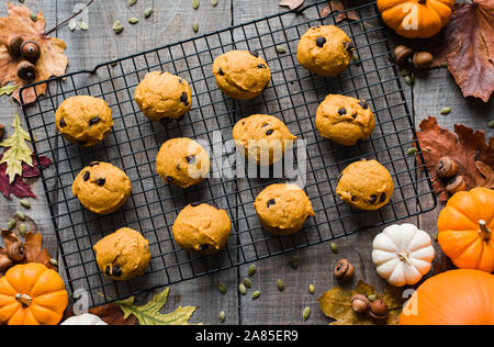 Overhead view of pumpkin chocolate chip cookies on wire cooling rack. - Stock Photo