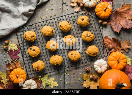 Overhead view of pumpkin chocolate chip cookies on a cooling rack. - Stock Photo