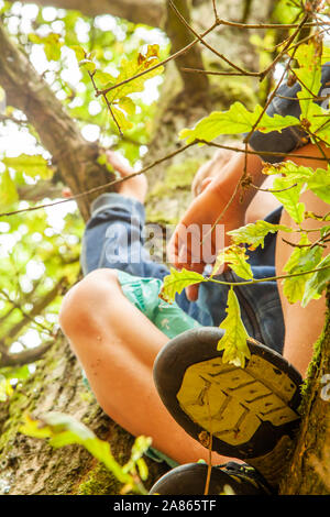 Young boy up in the tree looking out. - Stock Photo