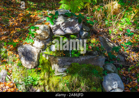 Small fountain covered with moss in the Hayedo de Montejo in early autumn - Stock Photo