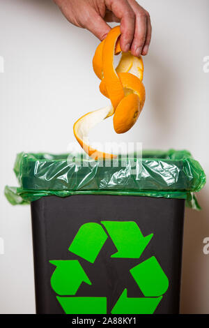 Hand putting orange peel in recycling bio bin. Person in a house kitchen separating waste. Black trash bin with green bag and recycling symbol. - Stock Photo