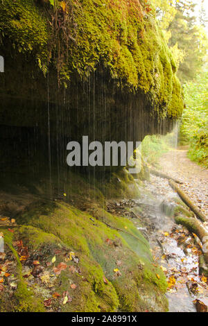 Travertine sinter, Wutachschlucht (Wutach canyon),  autumn, Black Forest, Germany - Stock Photo