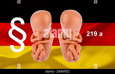 Ein 12-Wochen alter Emybro aus Plastik. Modell für Schwangerschaft, Abtreibung und Verhütung. Schutz von ungeborenem Leben, Werbeverbot für Abtreibung - Stock Photo