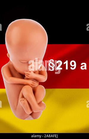 Ein 12-Wochen alter Emybro aus Plastik. Modell für Schwangerschaft, Abtreibung und Verhütung. Schutz von ungeborenem Leben, Werbeverbor für Abtreibung - Stock Photo