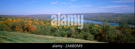 Forest at the lakeside, Keuka Lake, Finger Lakes, New York State, USA - Stock Photo