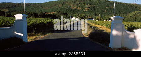 Entrance of a vineyard, Franschhoek, Western Cape Province, South Africa - Stock Photo