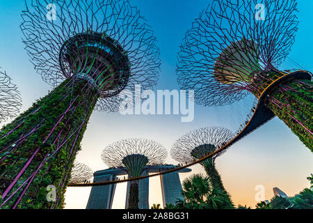 South East Asia, Singapore Famous destinations Garden By The Bay tourism travel tourist attraction Supertree Grove during blue
