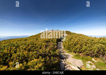 Hiking trail to Babia Gora mountain - Stock Photo