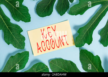 Writing note showing Key Account. Business concept for individual approach of sales showing to their customers Leaves surrounding notepaper above empt - Stock Photo