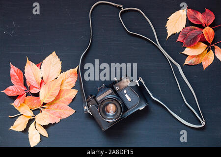yellow autumn leaves old camera background z - Stock Photo
