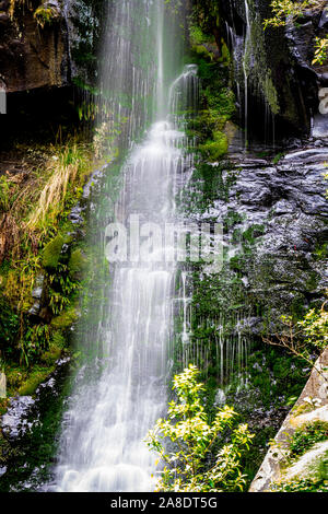 Upper Kalimna Falls in the Great Otway National Park, Victoria, Australia. - Stock Photo
