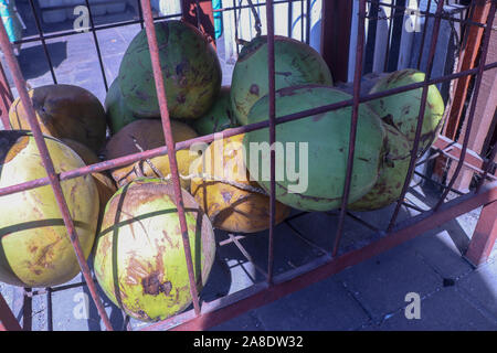 Pile of fresh green coconuts in wire cage. Young coconuts. Market hall on Bali island in Indonesia. Fresh drink sale. Healthy and refreshing energy. - Stock Photo