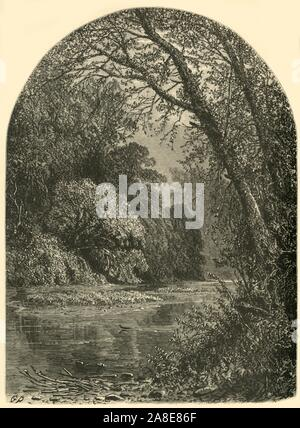 'Moss Islands, in the Juniata', 1874. Islands on the Juniata River, Pennsylvania, USA. 'The stream is not broad, but tolerably deep, and abounding in fish, which rise every moment at the flies that hover over the placid surface. Between here and Perryville the river is full of beautiful islands, covered with trees whose branches sweep down to the ground and often hide the bank. With the branches are interlaced wild-vines, with huge leaves; and between them the golden-rod, and the big yellow daisy, and the large-leaved fern, make their appearance. In the low parts of these islands there are bea - Stock Photo