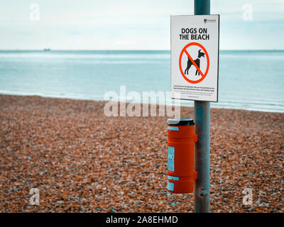 No Dogs on Beach sign, Dogs are banned from the beach in Portsmouth, England during the summer months. - Stock Photo