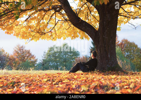 Man sitting under majestic orange cherry tree at autumn park at sunset. Dramatic colorful fall scene. Landscape photography - Stock Photo