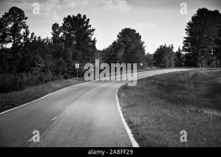 A curving  empty asphalt highway leading through pine trees in rural Southern Mississippi, USA, in Black and white, cold toned, - Stock Photo