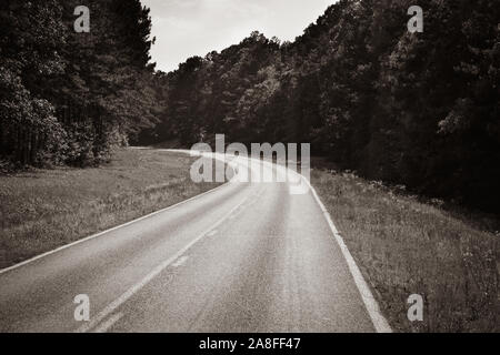 A curving  empty asphalt highway cutting through a pine tree forest in rural Southern Mississippi, USA in sepia, - Stock Photo