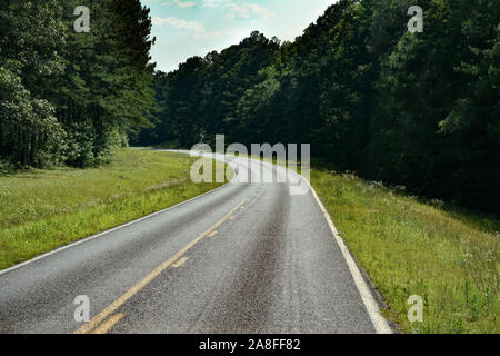 A curving  empty asphalt highway cutting through a pine tree forest in rural Southern Mississippi, USA - Stock Photo