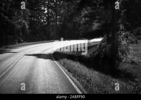 A curving  empty asphalt highway cutting through a pine tree forest in rural Southern Mississippi, USA, in black and white - Stock Photo