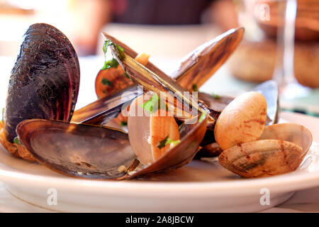 a restaurant white plate full of mussels and clams cooked in white wine sauce with garlic and parsley a traditional Portuguese dish called Ameijoas a - Stock Photo