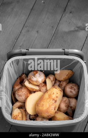 Food waste recycling bin container with rotten vegetables inside.  Food waste concept with selective colour - Stock Photo