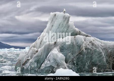 Abgebrochenes Eis des Monacobreen im arktischen Ozean, Haakon-VII-Land, Svalbard. Just broken off part of Monacobreen floating in the arctic ocean.