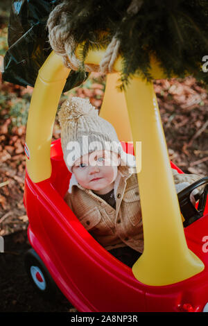 Little boy bringing Christmas tree home on top of a toy car - Stock Photo