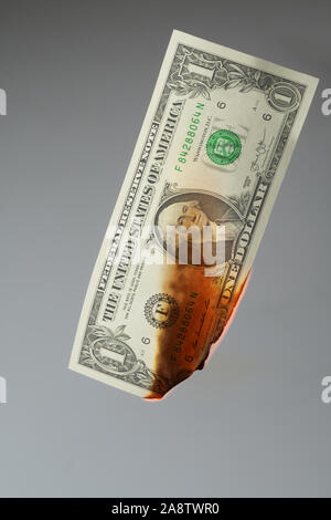 One US Dollar banknote burning in flames isolated on grey background - Stock Photo