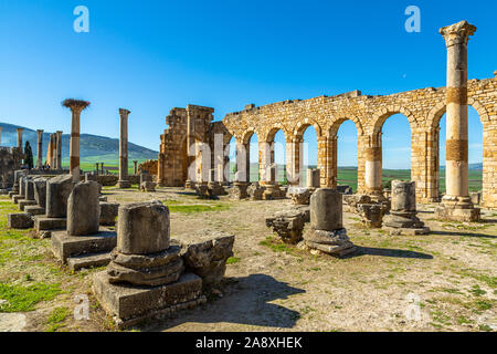 Volubilis, Interior of the Basilica, Roman ruins close to the city of Meknes. Volubilis was excavated by the French 1912-1956 Morocco - Stock Photo