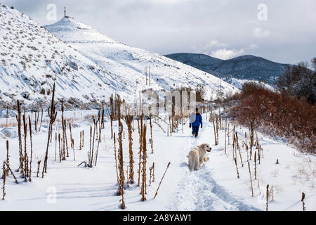 Woman hiking with platinum colored Golden Retriever dog in fresh snow along the Arkansas River; Salida; Colorado; USA - Stock Photo