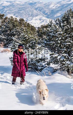 Woman hiking with platinum colored Golden Retriever dog in fresh snow near Salida; Colorado; USA - Stock Photo