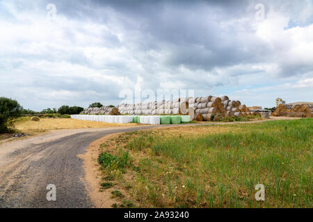 Rural scenery in Mallorca, a dirt road and a lot of haystacks on the background, on a stormy day. Es Pla de Mallorca region. - Stock Photo