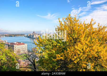 Amazing cityscape of Budapest, Hungary with autumn tree in the foreground. Hungarian Parliament Building, Orszaghaz, in the background on the other side of the Danube river. Beautiful cities. - Stock Photo