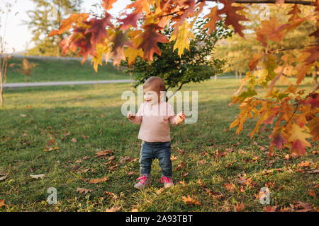 Beautiful little girl play with red leaves near the tree in autumn. Happy ten month baby walking in the park - Stock Photo