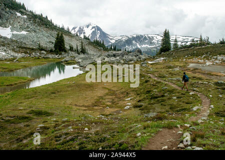 A man hikes on an alpine trail on a cloudy summer day on Blackcomb Mountain in BC. - Stock Photo