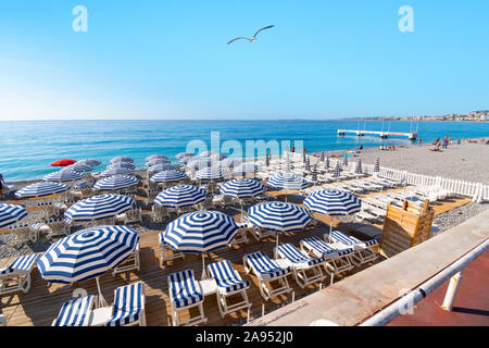 A seagull flies over the lounge chairs at a resort on the beach at the Bay of Angels, on the French Riviera in Nice, France. - Stock Photo