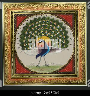 Peacock, Indian miniature painting, Udaipur, Rajasthan, India - Stock Photo
