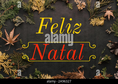 Illustration with 'Feliz Natal' written in Portuguese language, with leaves and twigs. Christmas model for web, wallpaper, digital graphics - Stock Photo