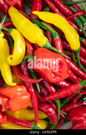 Closeup of fresh chili peppers, red, orange and yellow hot peppers viewed from above, habanero, lemon drop, thai peppers, cayenne - Stock Photo