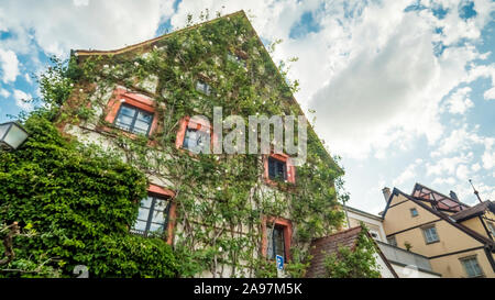 Bamberg 2019. Typical city palace completely covered with plants and flowers. We are on a warm and cloudy summer afternoon on the Regnitz river. Augus - Stock Photo