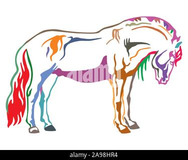 Colorful decorative portrait of horse standing in profile, horse exterior. Vector isolated illustration in different colors on white background. Image - Stock Photo