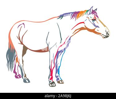 Colorful decorative portrait of horse standing in profile, horse exterior. Vector isolated illustration in in different colors on white background. Im - Stock Photo