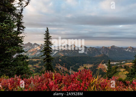 Red Huckleberry Leaves in Front of Tatoosh Mountain Range - Stock Photo