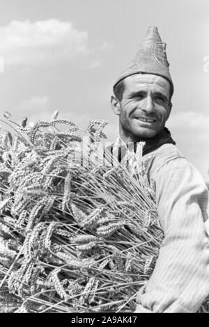 Szenes of the countrified workaday life, Germany 1930s. - Stock Photo