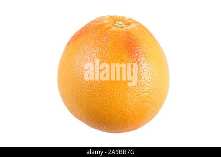 Close-up of a whole ripe pink grapefruit (Citrus paradisi), isolated on white background. - Stock Photo