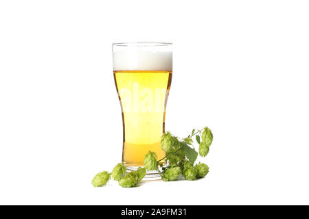 Glass of beer and hop branch isolated on white background - Stock Photo