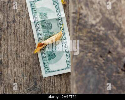 Lost and found money - Stock Photo